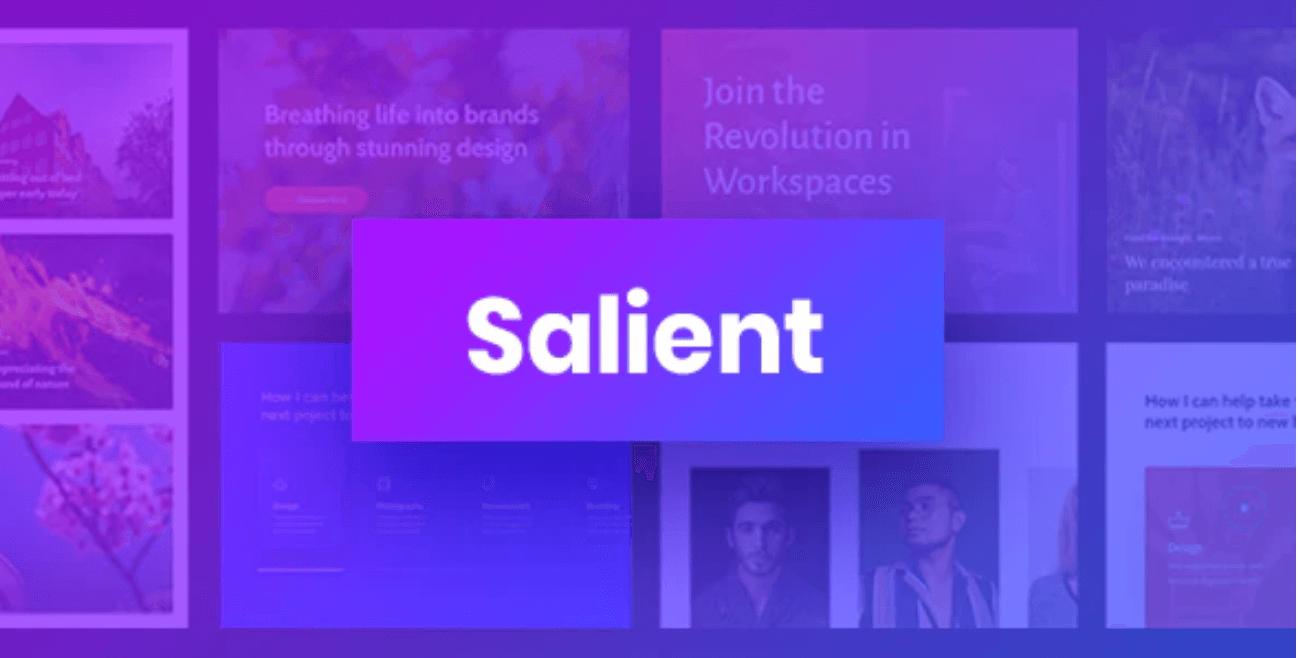 Review Salient: waarom ik dit thema gebruik voor het bouwen van mijn websites